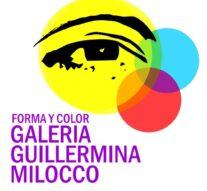 «Forma y Color» inicia su etapa de selección