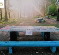 Artistas Plásticos de Andino plasmaron sus obras en «La Playada»