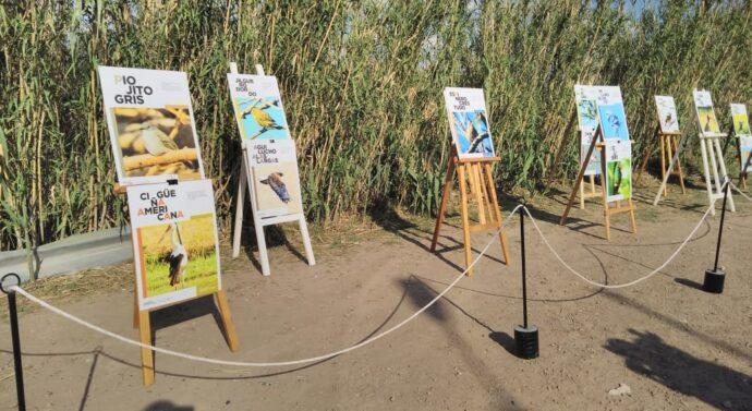 La Muestra «Aves» inició su gira santafesina en Tortugas