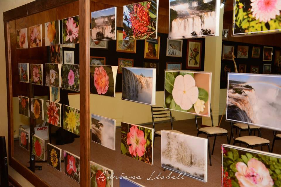 La Muestra «Maravillosa Naturaleza» llega a San Gregorio