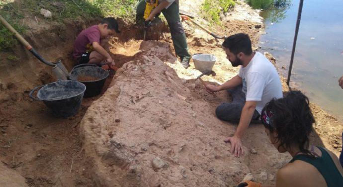 Encontraron un fósil de 40 mil años en Arroyo Seco