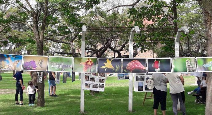 Larrechea celebra su día con distintas propuestas