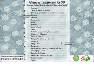 talleres comunales 2014