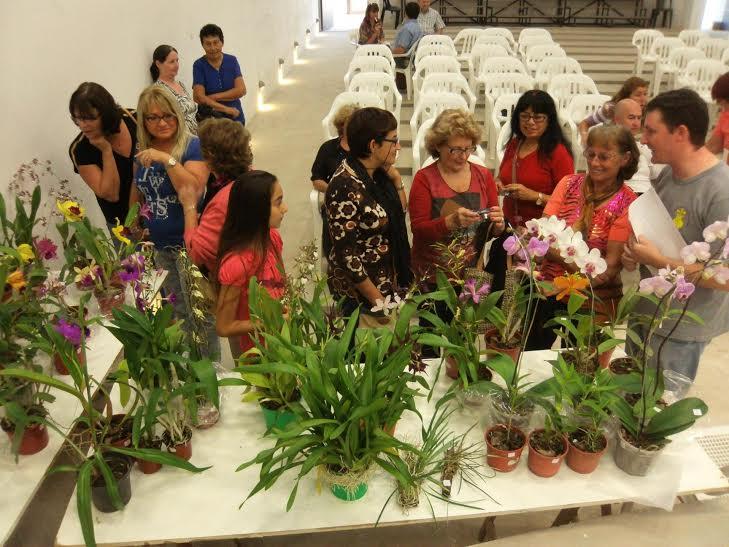 Interesante Taller sobre cultivo de Orquídeas en San Guillermo