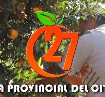 Malabrigo: Ya tiene fecha la Fiesta Provincial del Citrus